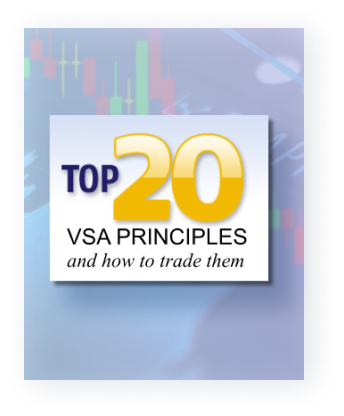 Top 20 VSA Principles - and How to Trade Them | Tradeguider